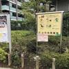小竹向原緑地