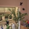 「植物のリラックス効果!キッチン側からも眺めの良い部屋」