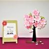 HANAIZUMO`s  Cherry blossom