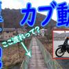 【カブ旅】箱根・芦ノ湖周辺をカブで満喫してきた【③ 峠道 カブ動画編】