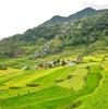 フィリピン 陸の秘境 バナウエ・バタッド~絶景!棚田