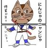 No134.にんじゃのニャンじゃ