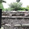 相馬中村城跡に行ってきた件。戦国時代、戊辰戦争を生き抜いてきた「相馬魂」