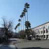 朝倉(高知大学前)から朝倉キャンパス内への軌道敷設計画判明