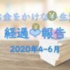 お金をかけない生活実践 経過報告 2020年4~6月