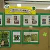 花と緑のある暮らし 環境  緑のカーテン