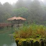 「阿里山国家森林遊楽区」散策~「姉妹潭(Sister Pond)」に伝わる悲しい伝説!!