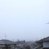 3月28日(木)雨のち曇り
