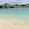 貝殻を拾いに沖縄の海を巡った