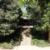 諏訪山古墳群:36号墳(富士浅間神社)・37号墳(大原古墳) 埼玉県東松山市西本宿