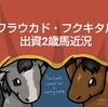 ファンタストクラブ到着!ワラウカド出資2歳馬近況(2021/01/08)