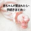 赤ちゃんが産まれたら~基本手続き☆