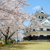 城山城の桜