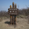 田代ルート~竜門山山頂~中央コース (桃源郷を望む竜門山2)