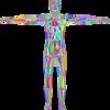 副腎疲労と神経伝達物質の話(下)