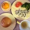 お野菜からの離乳食  [244日目 かじかのつみれ]