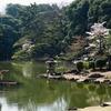 玉藻池(東京都新宿)