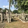 日本人墓地公園の存続は大丈夫だろうか