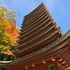 紅葉を撮りに談山神社へ 【談山神社境内編】