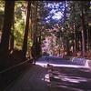 経ケ峯歴史公園を散歩(宮城県仙台市)