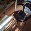 ワイワイ椅子