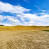 【一日一枚写真】鳥取砂丘 Part.8【一眼レフ】