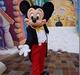 ディズニーランド・パリへ行こう(エクストラ・マジック・タイムにグリーティング)  / Trip to Disneyland Paris (Extra Magic Time and Greeting)