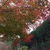 【車旅】道の駅スタンプラリー「木の香」「小松オアシス」