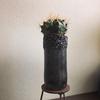 瓦礫燻黒長筒鉢 x ギムノカリキウム「翠晃冠」