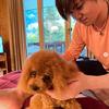 昌磨君がトロちゃんを綺麗にお手入れしてくれたお写真がアップされました。