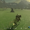 【Switch】物凄く今更ですが、あのゲーム始めました!【BOW】