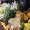 今日も新鮮な野菜 岡山県産🤗