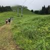 雨の青森県大鰐町トレイルラン