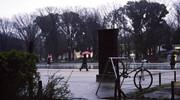 Snap #202 冷たい雨、やわらかな光