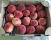 山梨で500円で桃食べ放題を実現する方法