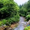 遥かなる旅路、8月の大朝日岳①