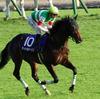 JRAサートゥルナーリアあえてのジャパンC(G1)に苦しい立場が見え隠れ!? 決断を左右したのはあの馬の存在か
