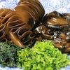 旨味たっぷり『海草スープ』