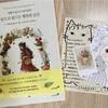 インスタで人気の韓国の塗り絵【エポルの森の少女】が気になり購入