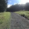 OSJ安達太良山トレイル2020/50kふりかえり【その3】レース後半