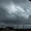 立秋颱風黒曜石