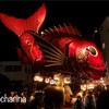 【佐賀県唐津市】佐賀の秋祭り・唐津くんちの美しい曳山は大迫力でした!