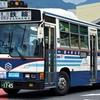 亀の井バス 1745