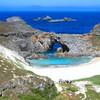 小笠原諸島、世界自然遺産に