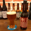 BREWDOG HOPPY CHRISTMAS IPA