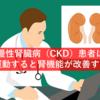 慢性腎臓病(CKD)患者は運動すると腎機能が改善する