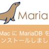 Mac に MariaDB をインストールしました