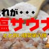 【入らなきゃ損!】塩サウナの魅力とその効果|ととのい研究第八弾