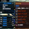 【MHXX】エリアルスタイルに合うスキルを詰め込んだネセト一式装備