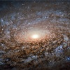 宇宙からの「強い信号」を検知!地球外生命体が存在するかも?